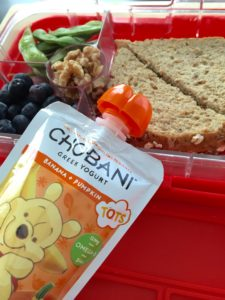 Quick fix lunchbox ideas for busy moms