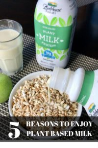 5 Reasons to Add Plant Based Milk to Your Diet
