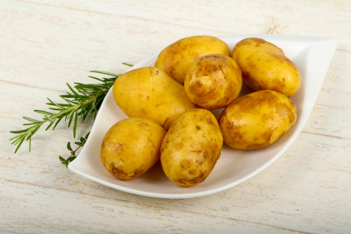 Potatoes on a plate with a rosemary beside
